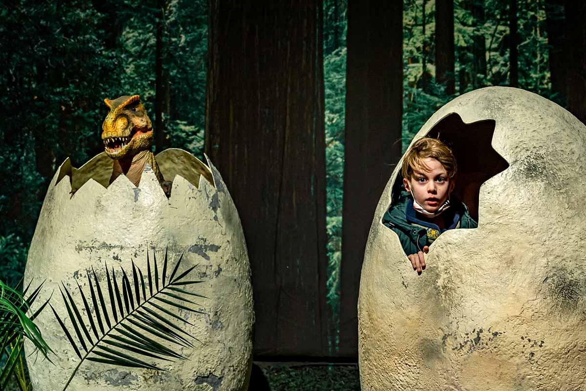 Chico en la exposición Dinoworld