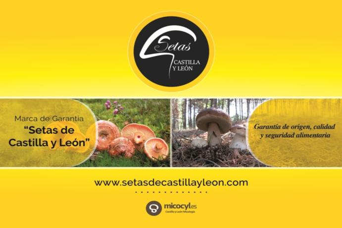 The Quality Guarantee Brand Setas de Castilla y León