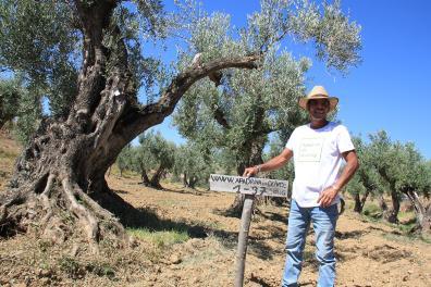 Persona con olivo