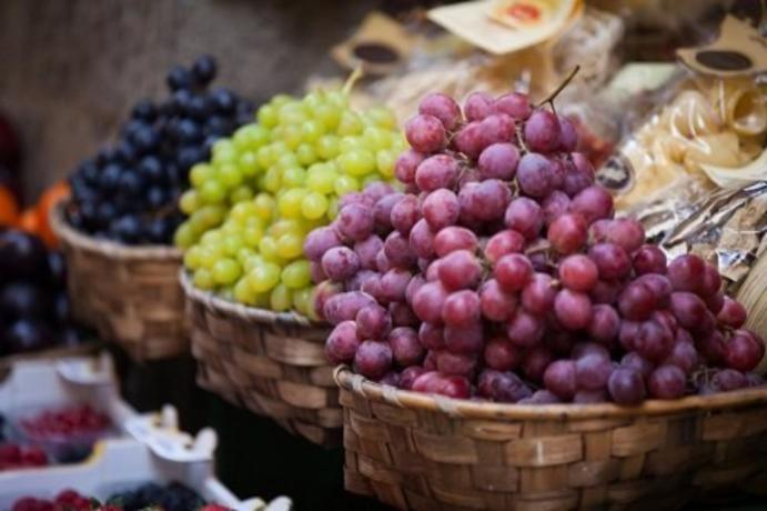 Spanish table grape