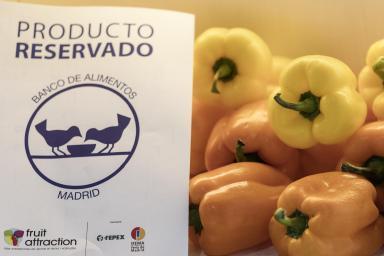 IFEMA ha facilitado la recogida de frutas y hortalizas de los expositores de Fruit Attraction para el Banco de Alimentos de Madrid, que consiguió reunir 40.000 kilos