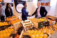 stand con naranjas