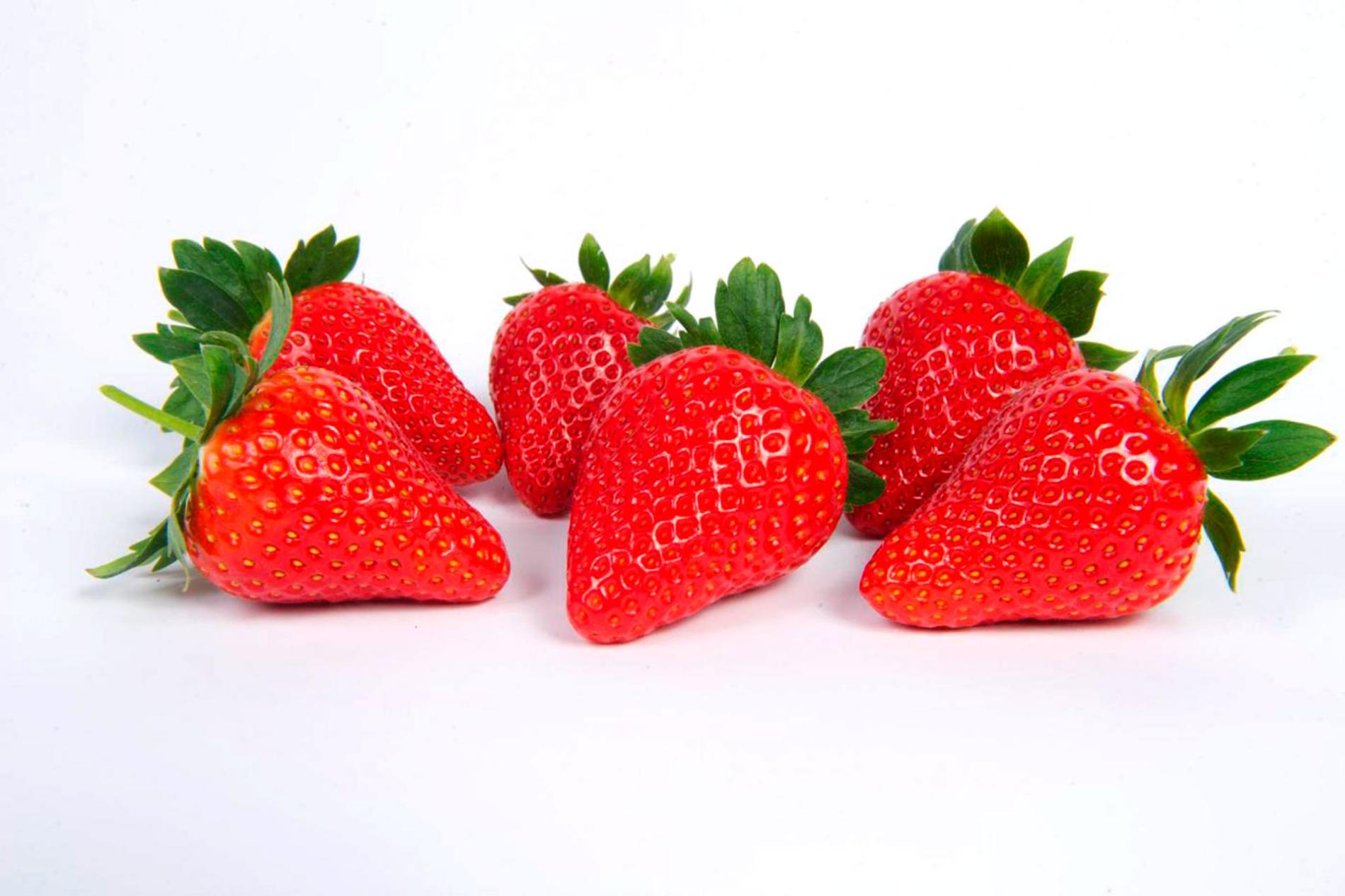 Fresas en fondo blanco