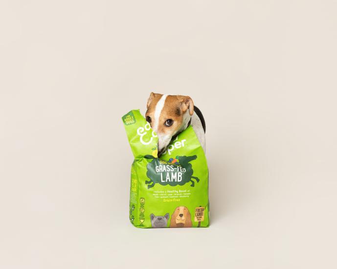 Alimenta a tu mascota con la menor huella medioambiental