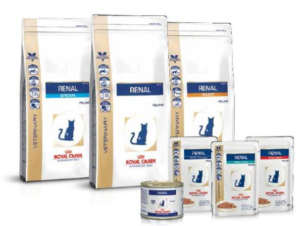 Dieta renal royal canin