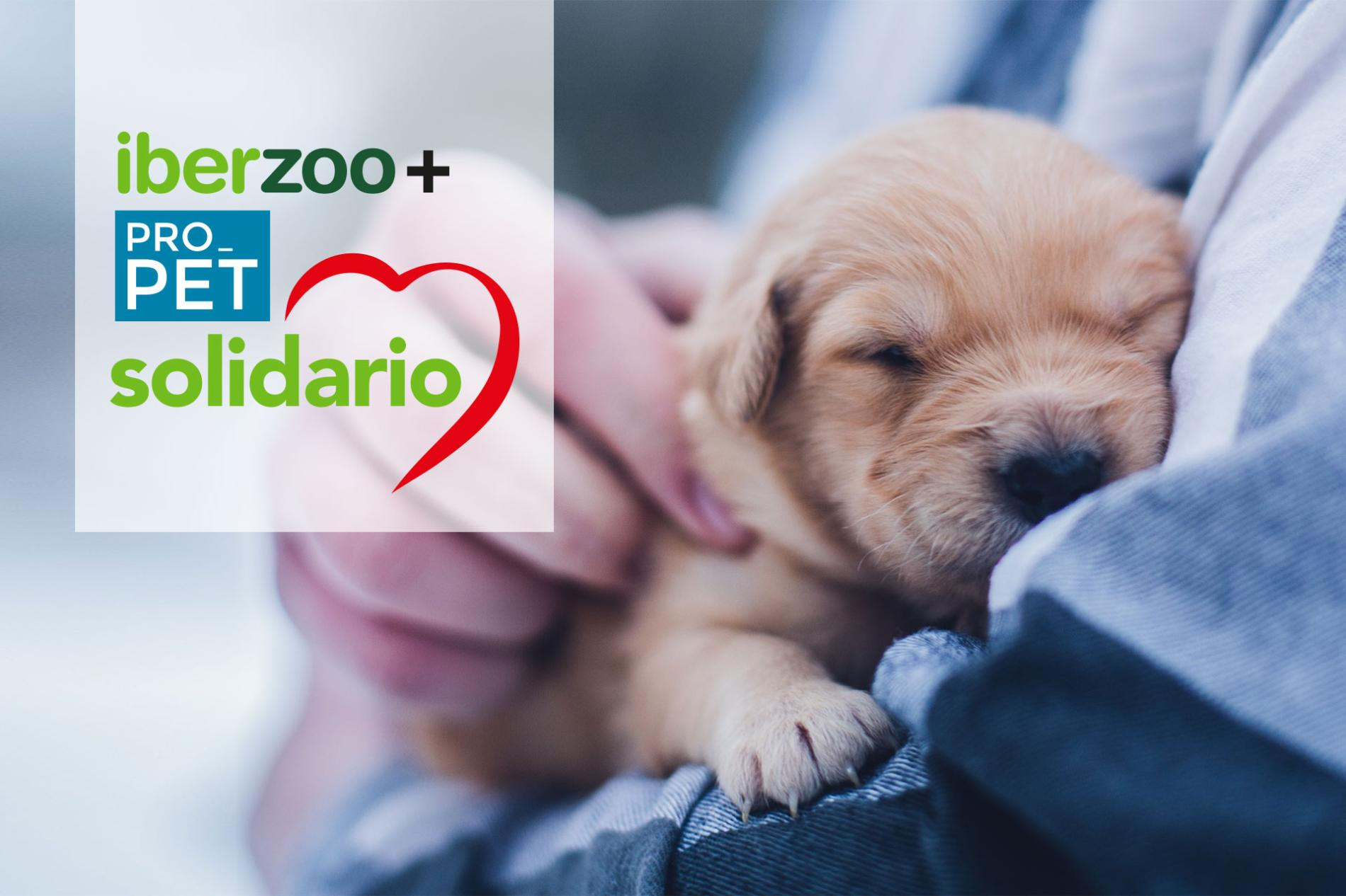 Marca Pet Solidario