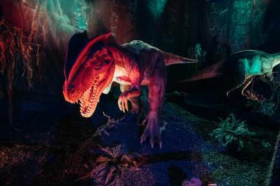 Dinoworld 6
