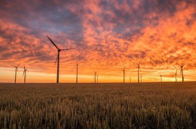 Energías renovables, en IFEMA