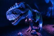 Dinoworld 8