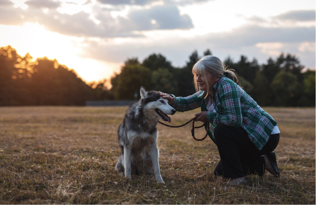 Descubre los beneficios en mente, cuerpo y espíritu que supone tener una mascota
