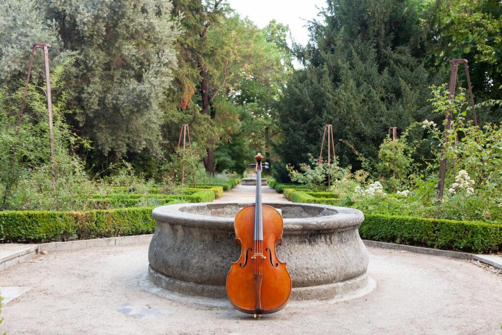 Los 'Paseos Musicales' vuelven al Real Jardín Botánico de Madrid con un nuevo repertorio de la Orquesta Sinfónica de CaixaBank para amenizar las noches de verano.