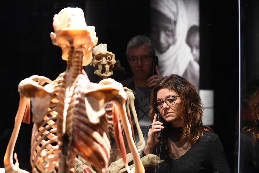La conocida exhibición sobre el cuerpo humano 'Body Worlds' llega a IFEMA
